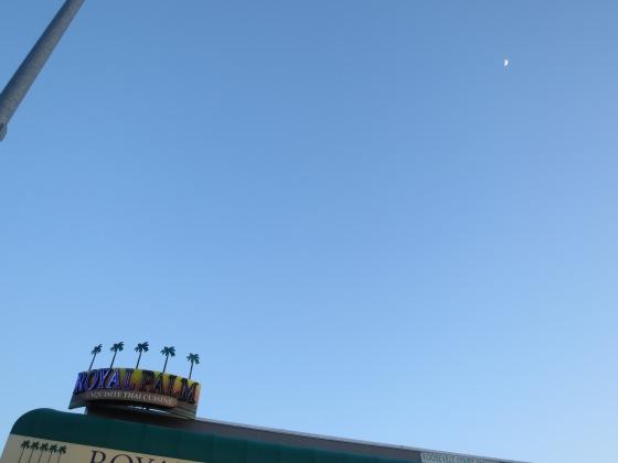 Moon over Thai Hammy